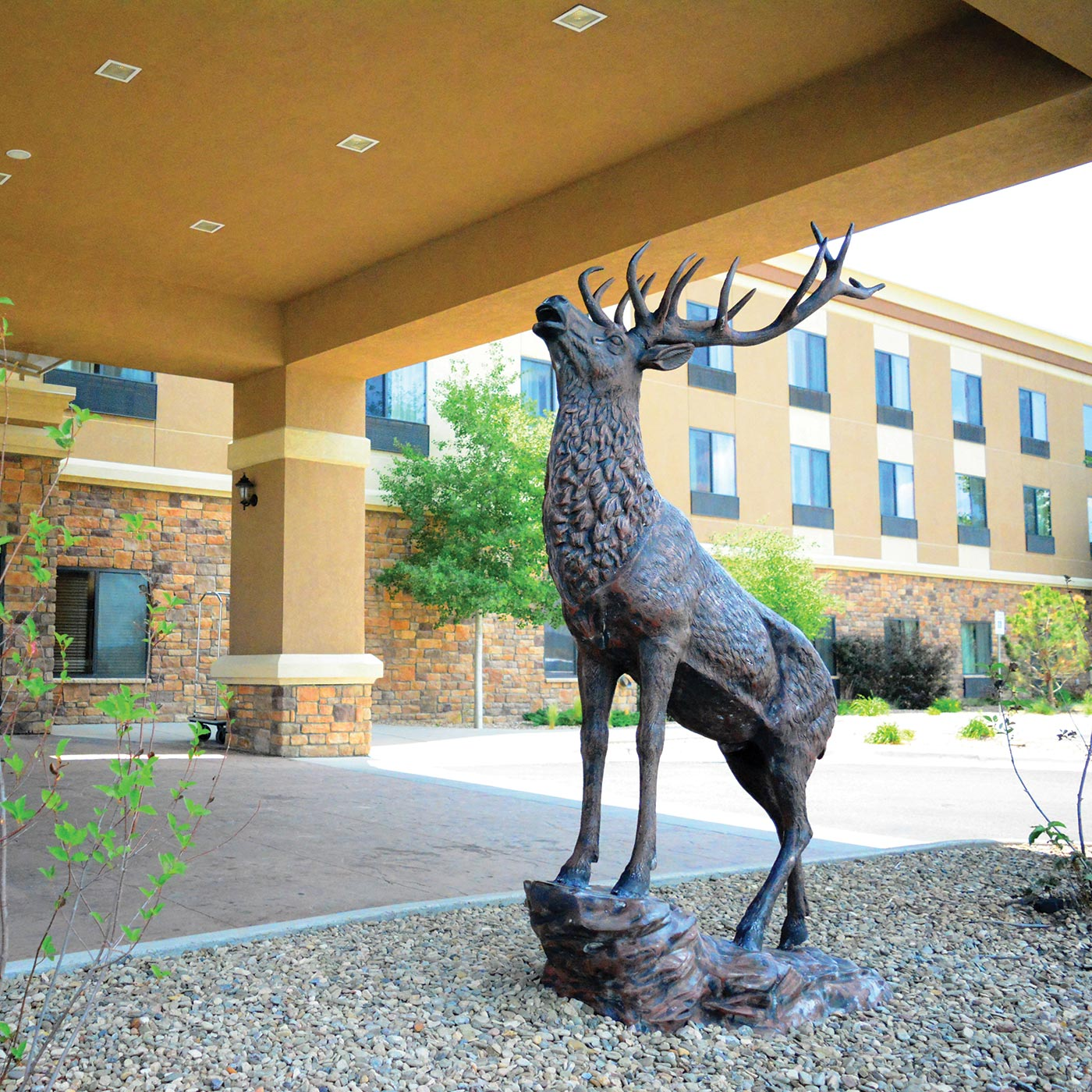 bronze sculpture of an elk in front of a hotel entry
