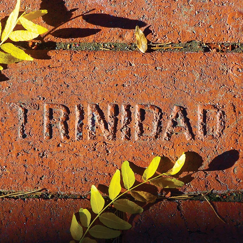 Close up image of a historic Trinidad paver brick with Trinidad in raised letters