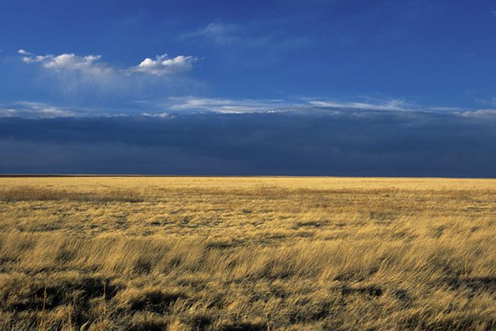 Image of comanche national grassland horizon