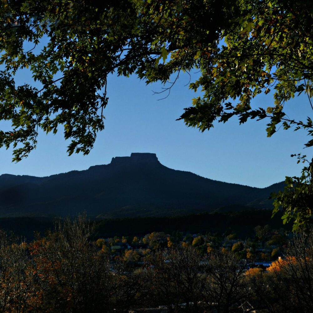 Photo of Fisher's Peak with leafy tree in foreground