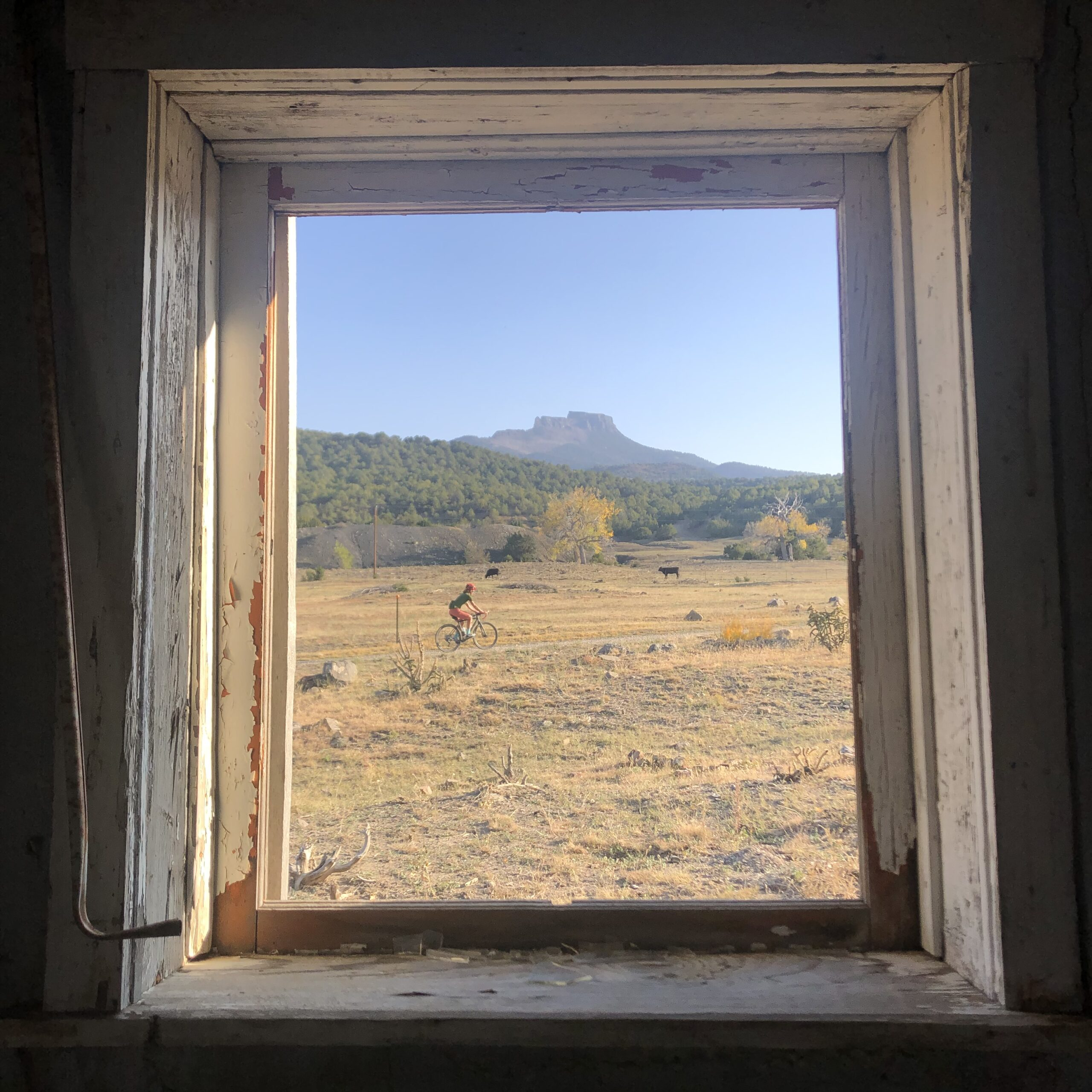 View of Fisher's Peak from a window